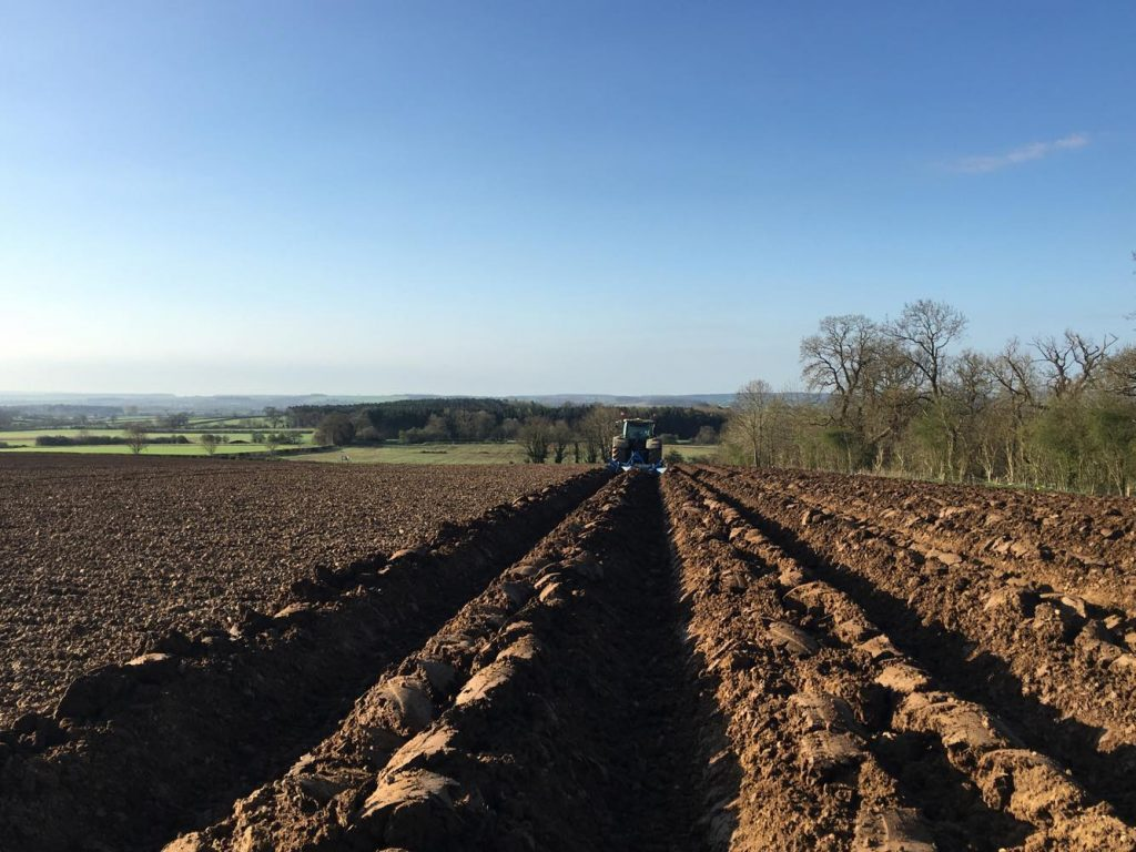 Potato bedforming precision ag